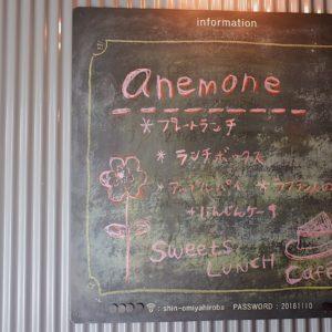 anemone cafe – 11/27 ありがとうございました